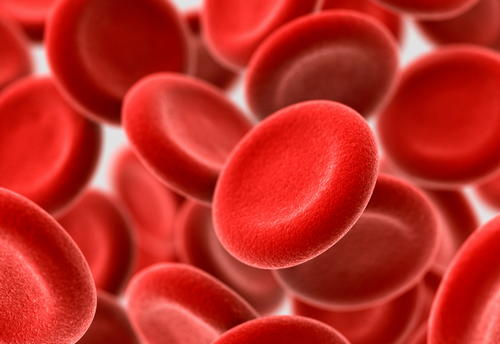 RBCs in blood Red Blood Cell Indices image photo picture